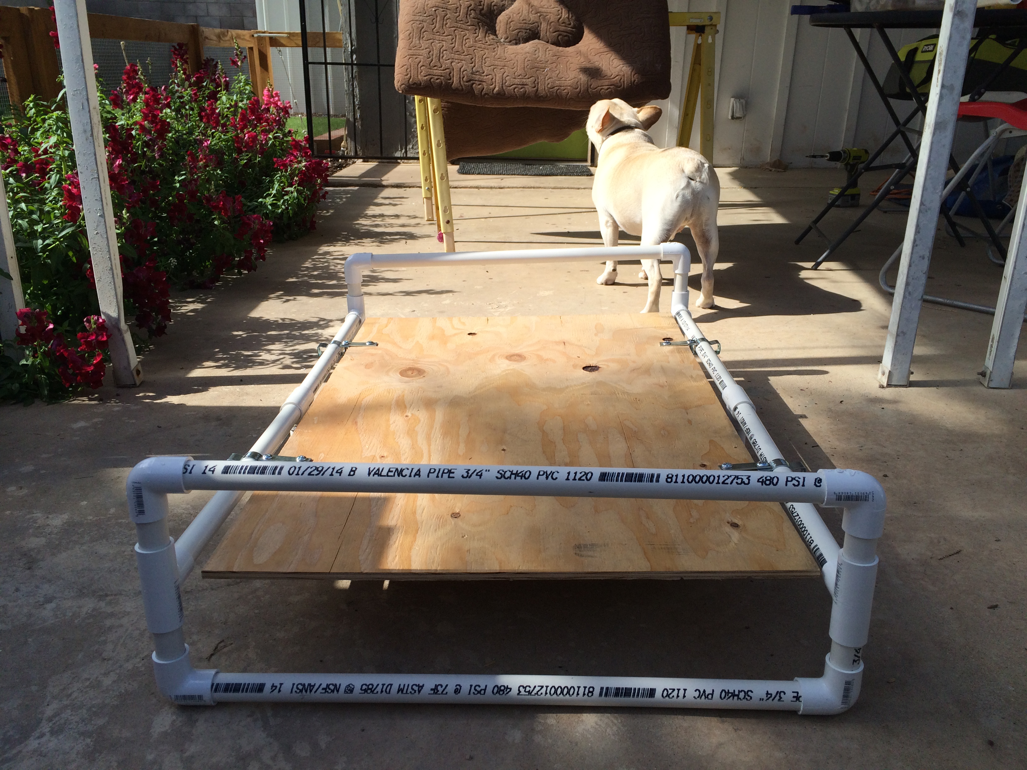 Pvc Pipe Dog Bed Ncl